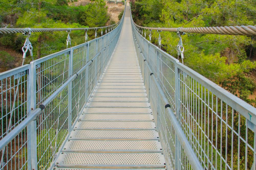הגשר בנשר
