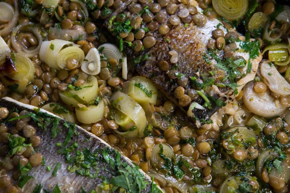 תבשיל דג לברק ועדשים של אבי ביטון