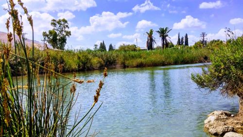 נחל הקיבוצים: מים צלולים במסלול רטוב במיוחד לקיץ החם